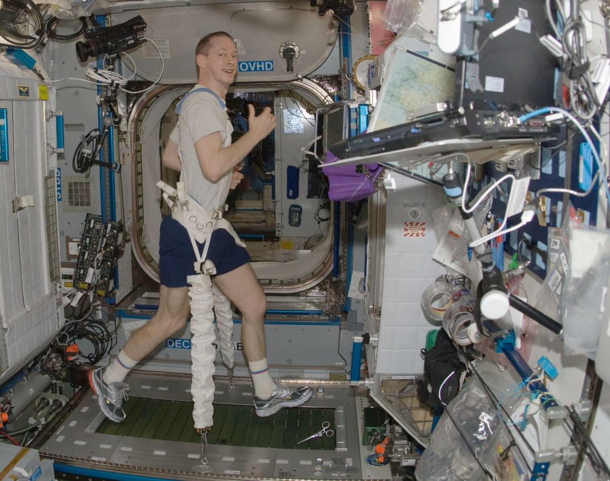Astronaut Frank De Winne, attached to the TVIS treadmill with bungee cords aboard the ISS