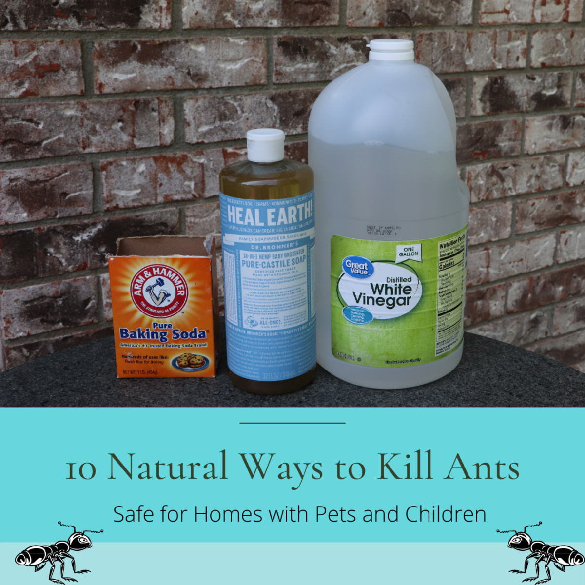 Several common household chemicals are non-toxic and effective at killing or repelling ants.