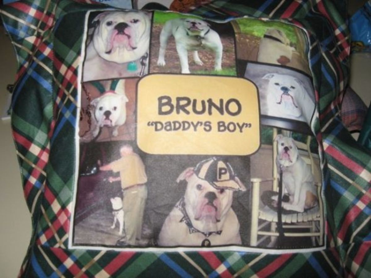 Bruno Pillow