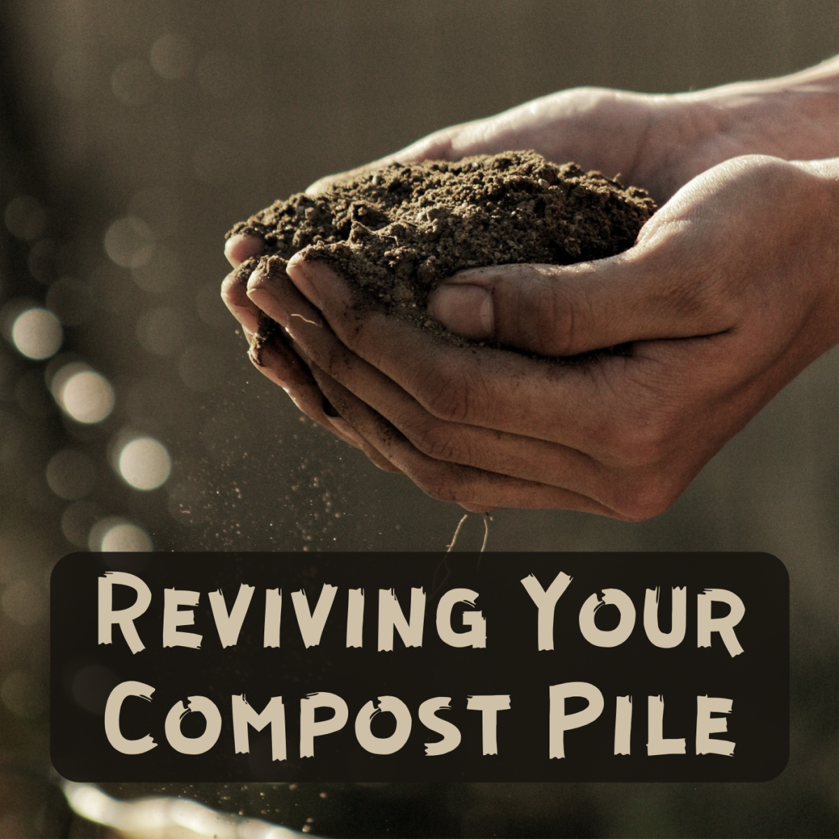 Follow this process to speed up decomposition in a dormant compost pile.