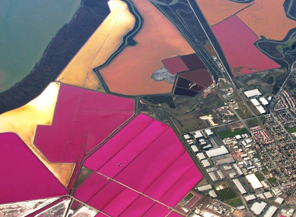 San Francisco has its own pink lakes, the result of salt mining operations in the Bay Area.