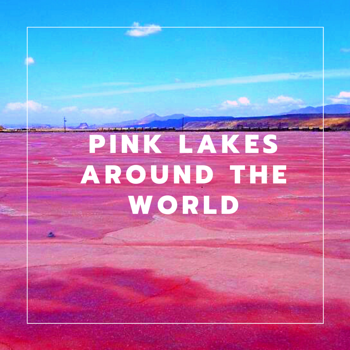 Pink lakes are the result of algae, halophilic bacteria, and archaea in extremely salty water.