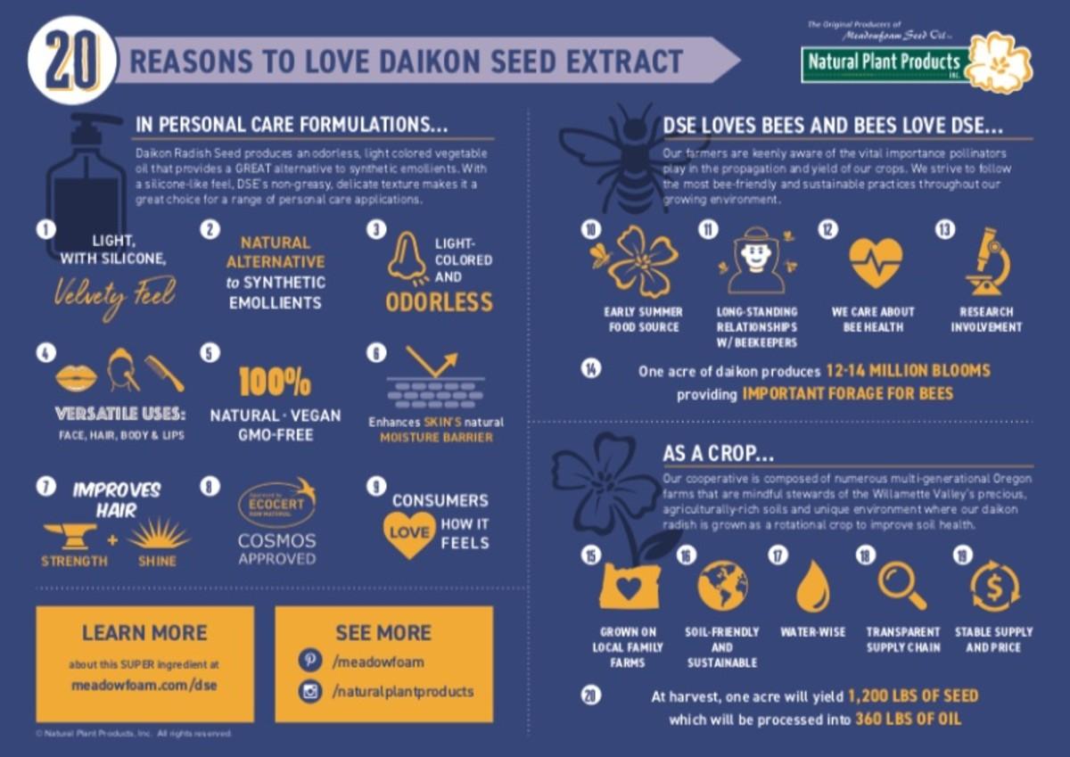 benefits-of-daikon-or-chinese-radish