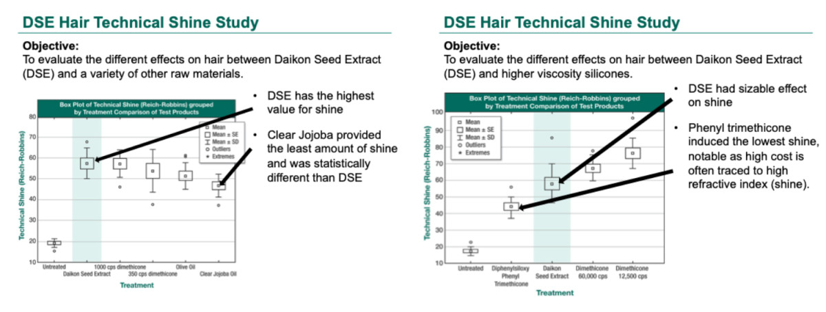Study On Effects of Daikon Seed Extract as Hair Treatment