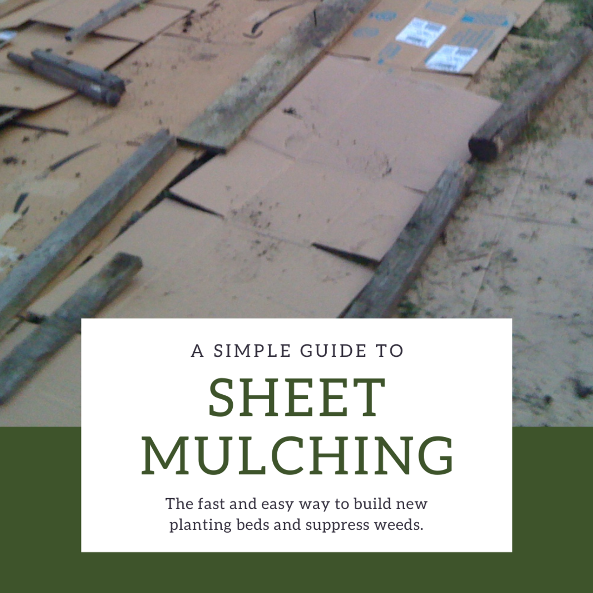 This guide will break down what you need to know to start sheet mulching.
