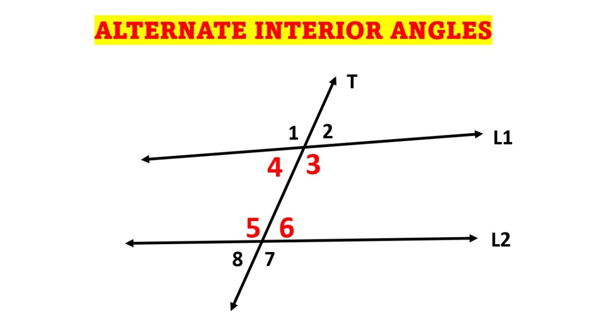 Alternate Interior Angles (Theorem and Examples)