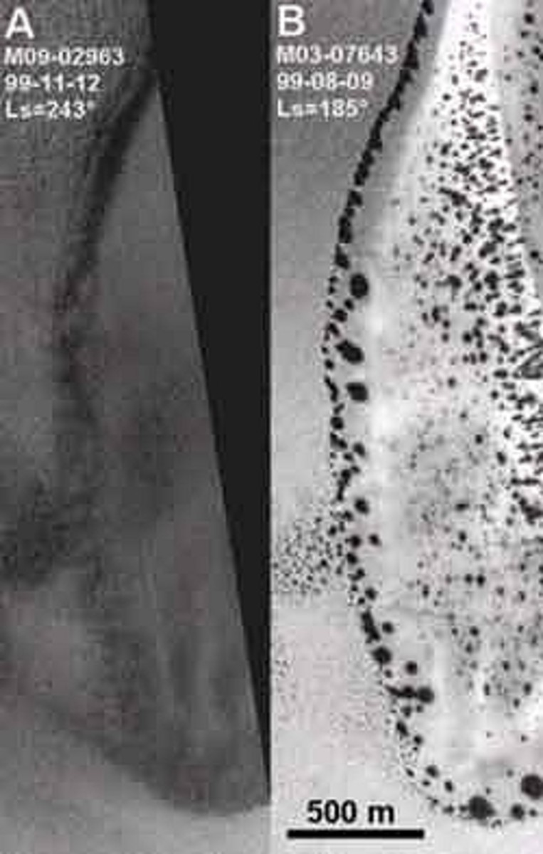 The seasonal dark spots that grow from spring onwards, are visible in the right-hand image, compared with the winter image on the left