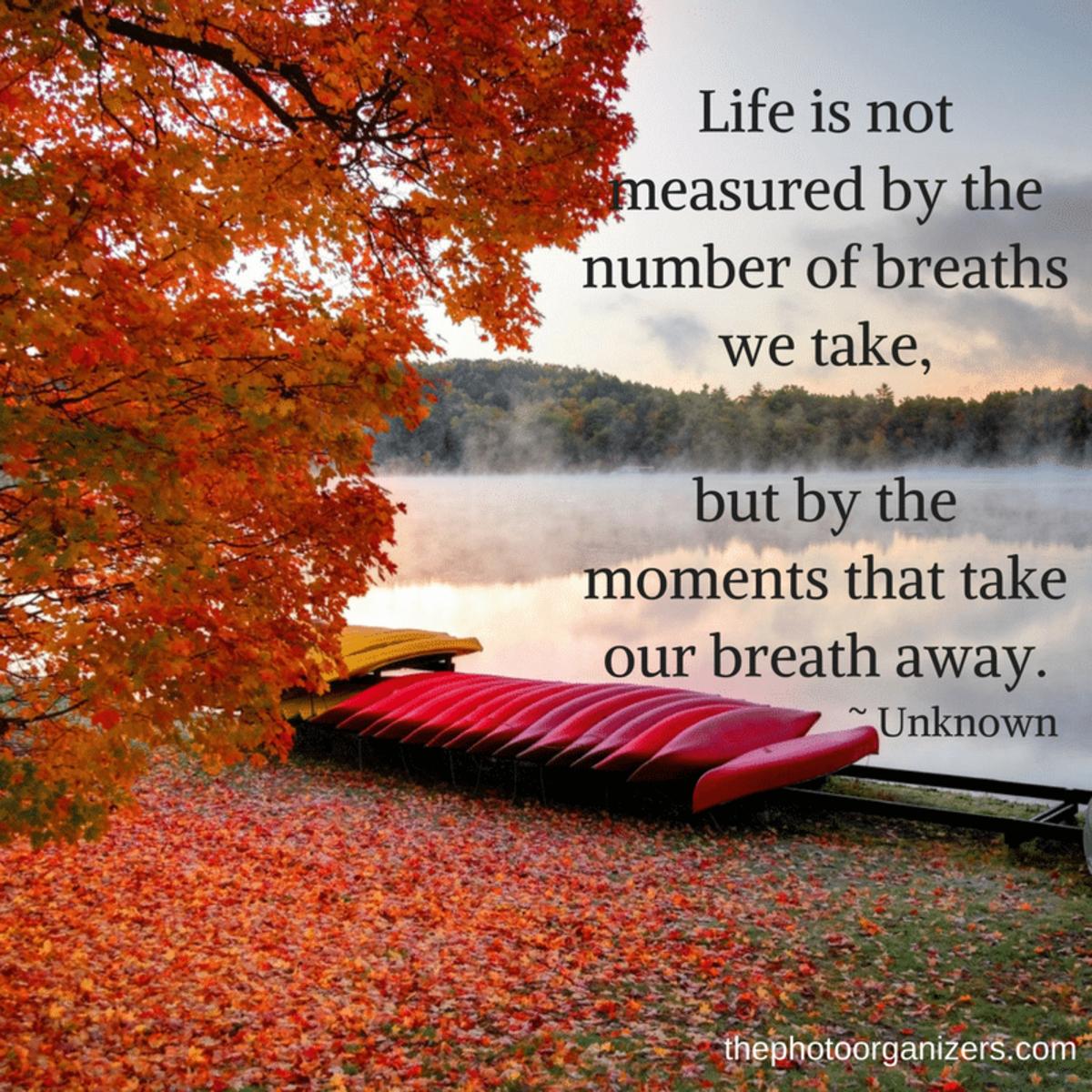 Poem: Buried Treasure / Response to Brenda Arledge's Word Prompt Week 17,