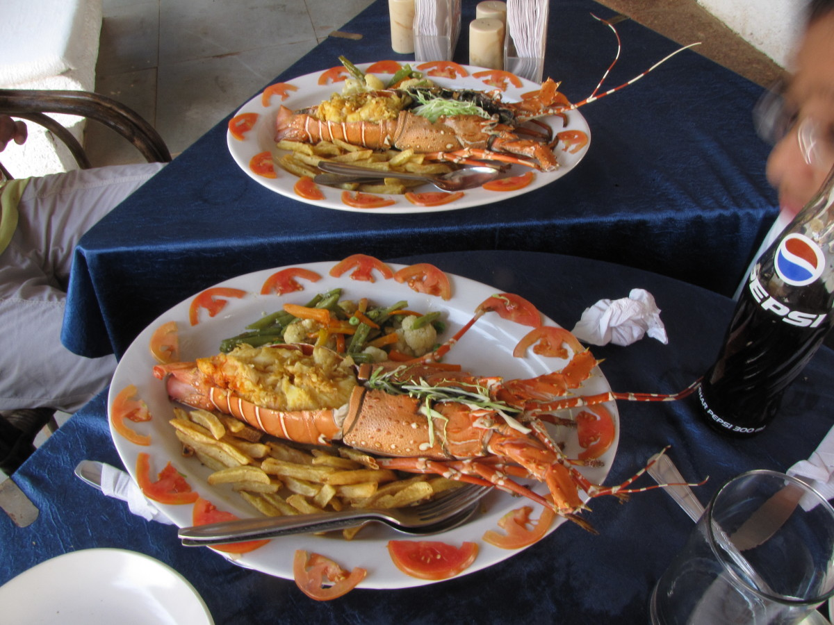 The Delicious Sea Foods