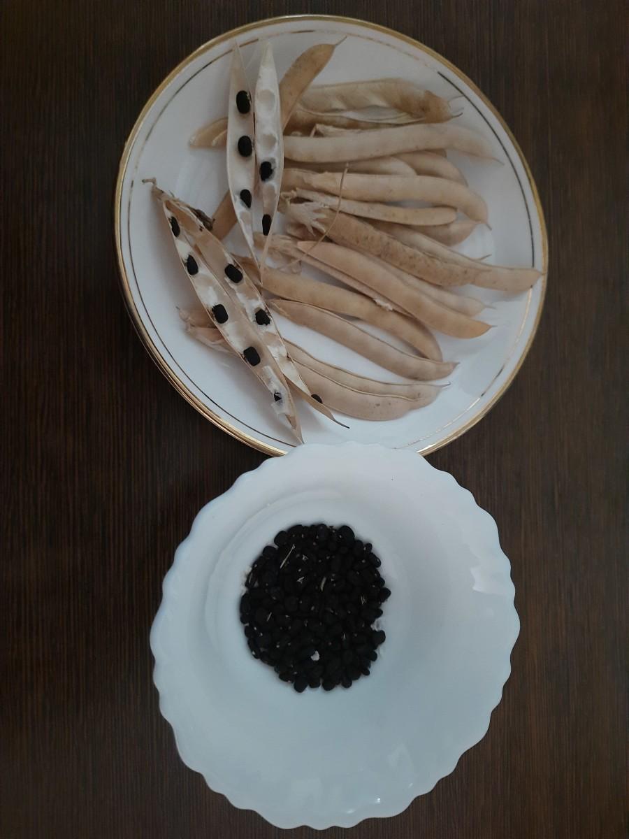 The seeds of the Aparajita flowers