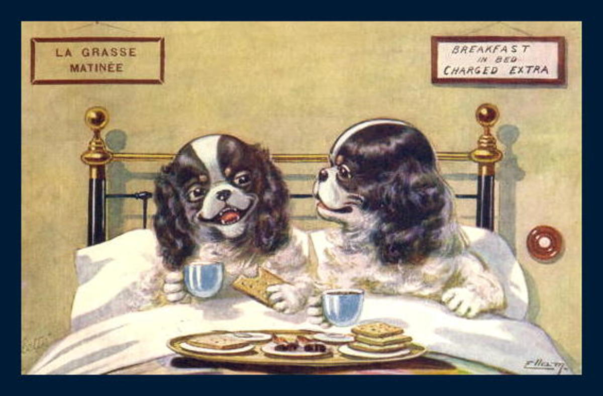 Vintage Father's Day greeting cards: Two dogs having breakfast in bed
