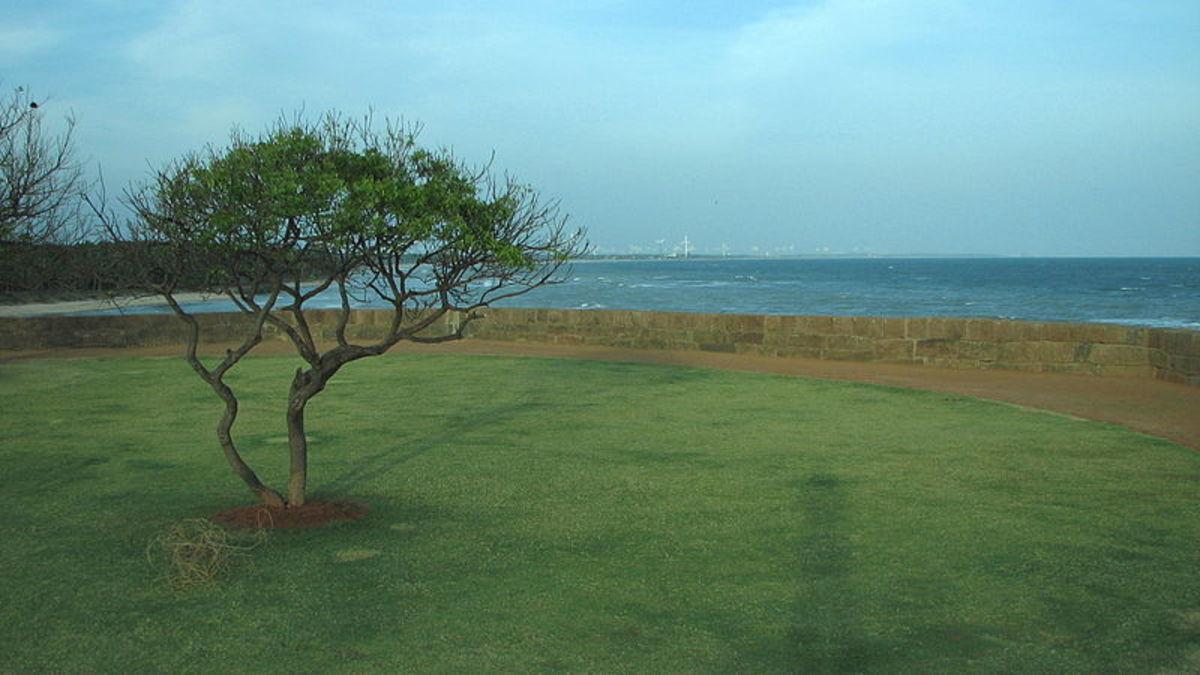 Vetta Kottai Fort Beach..Different colors of the nature