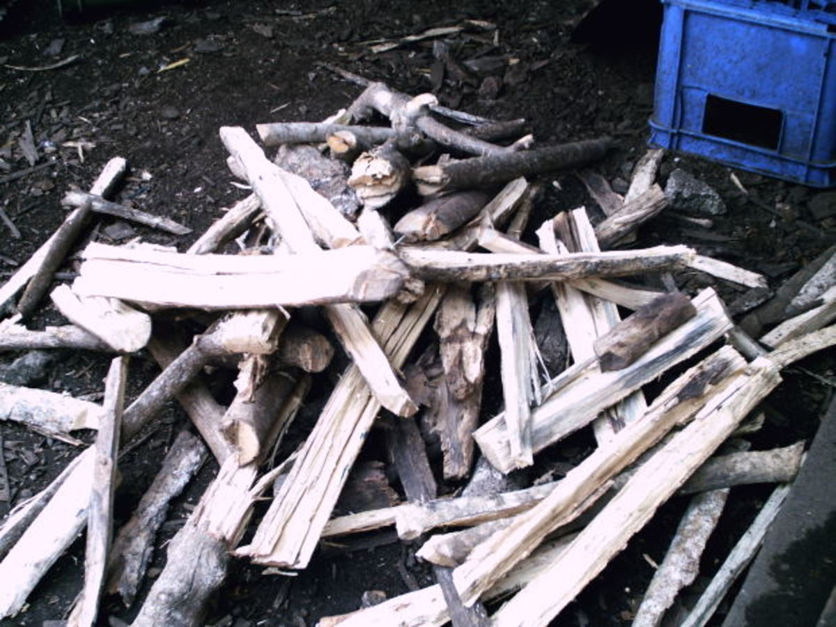 Haphazardly stacked firewood provides the perfect environment that is inviting to ticks.