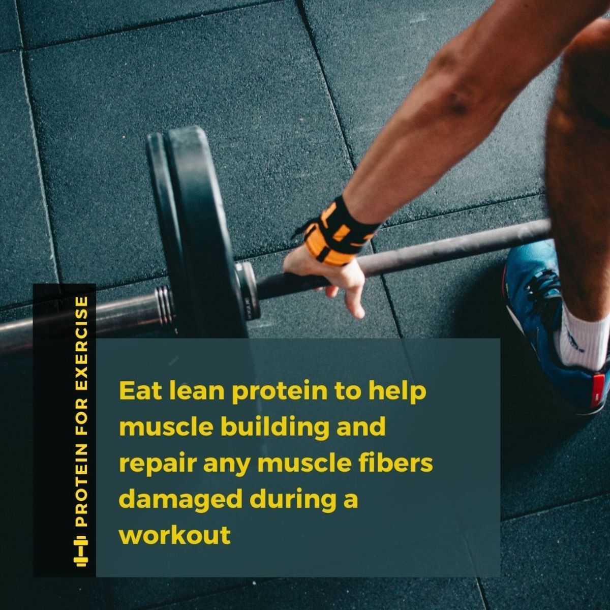 Protein is essential to repair muscle damaged during exercise