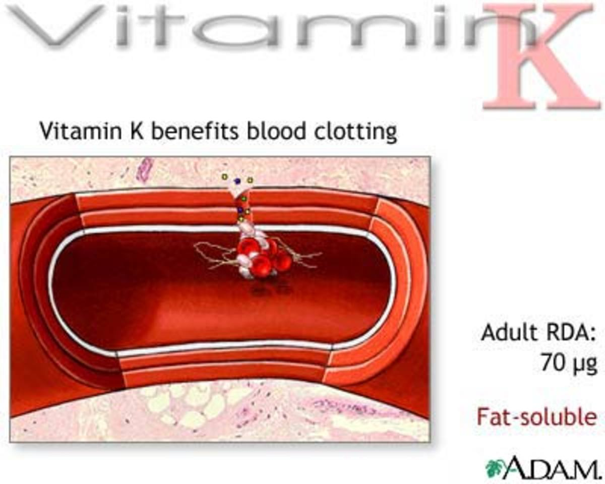 Vitamin K in Arteries