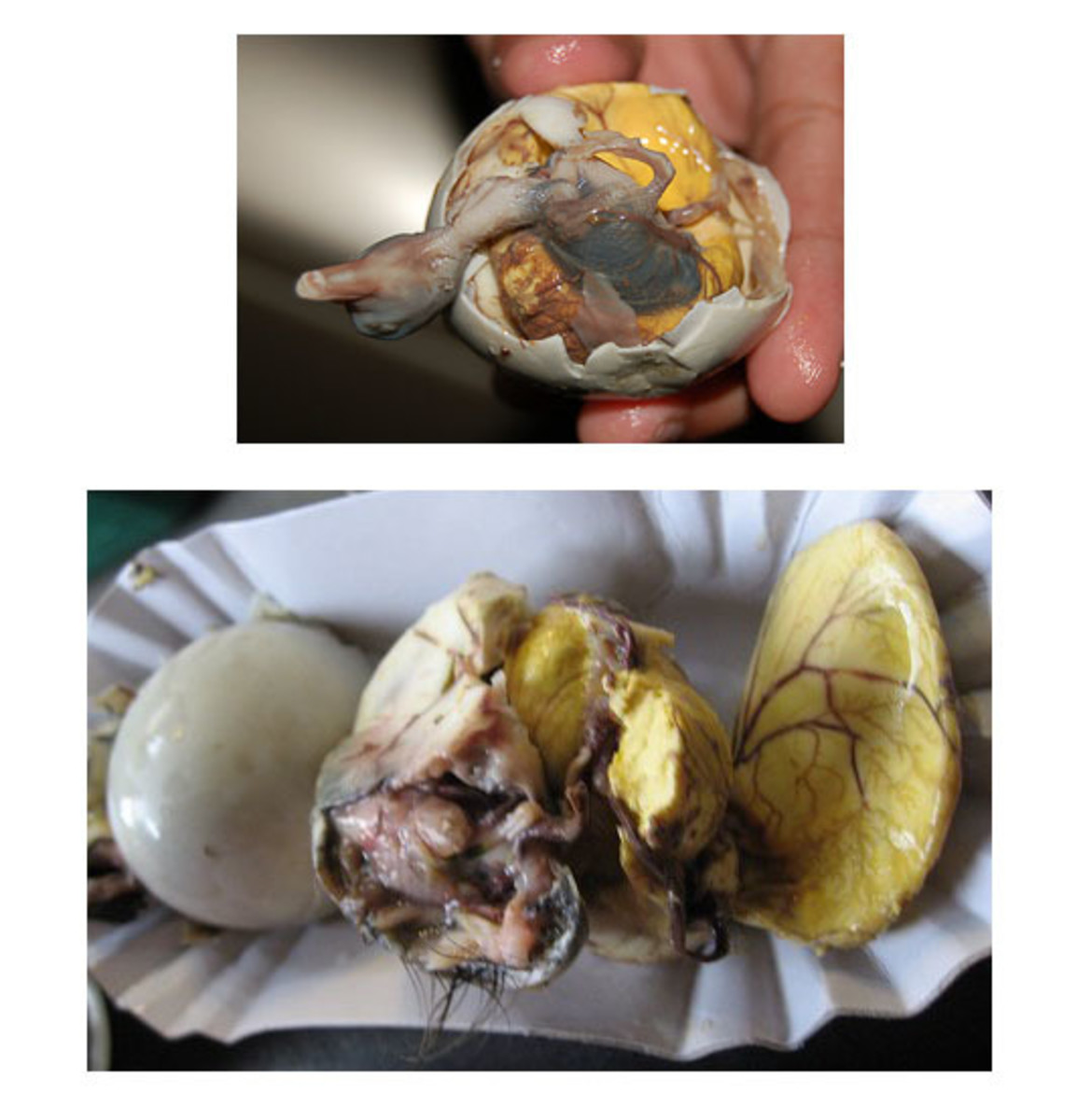 most-gross-foods-in-the-world