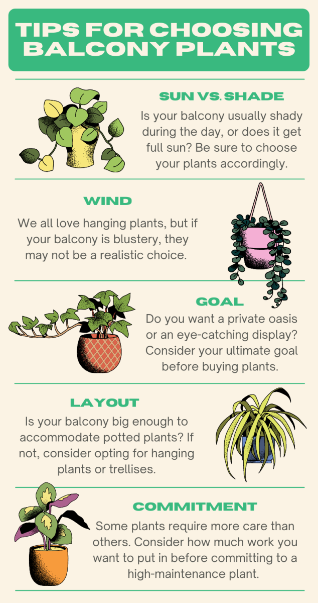Before buying plants for your balcony, there are a few key factors to consider.
