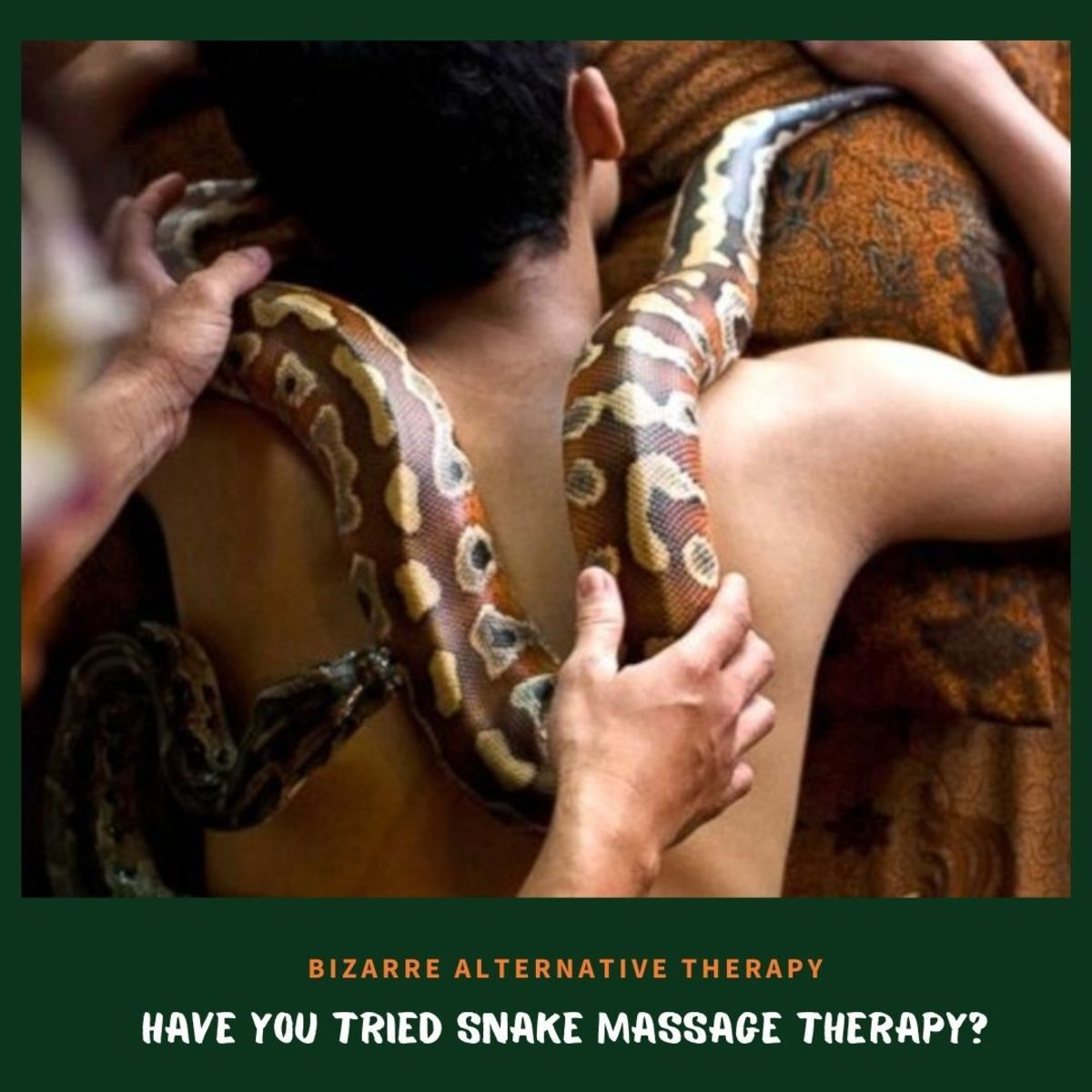 Snake massage therapy claimed to be an alternative treatment for depression.