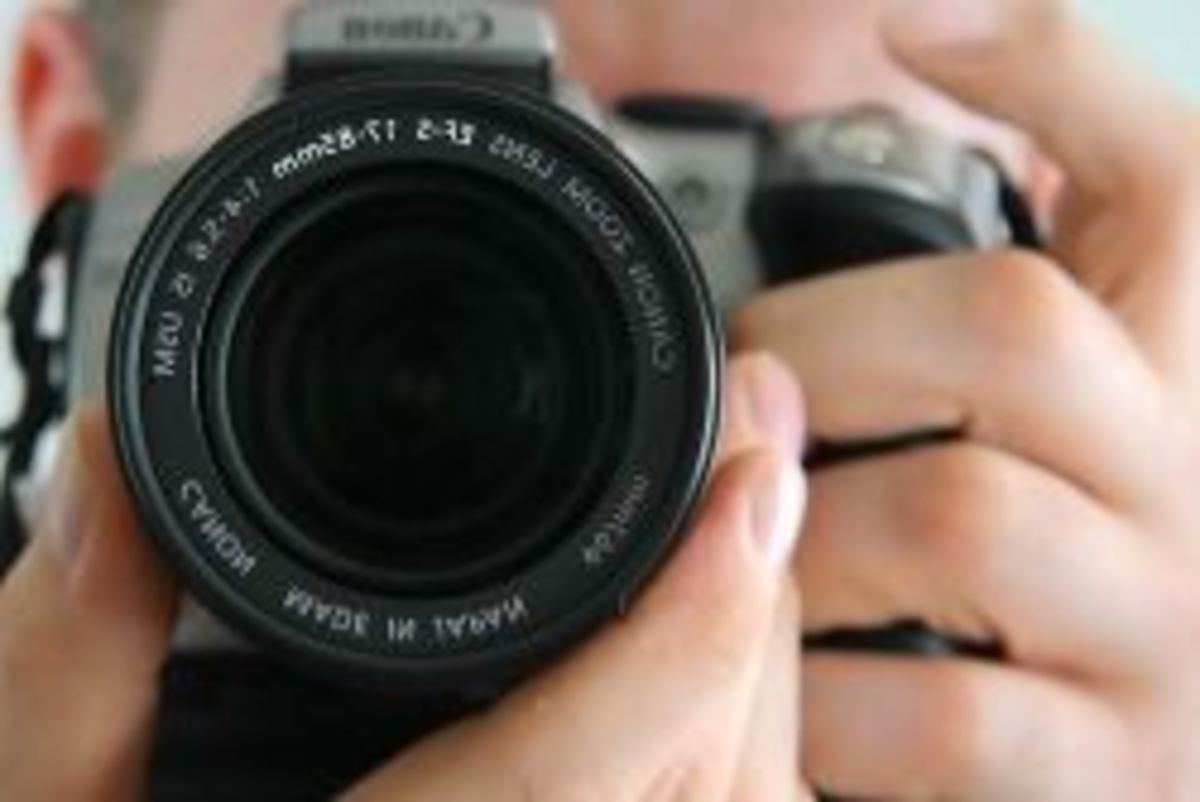 National Camera Day! | hubpages
