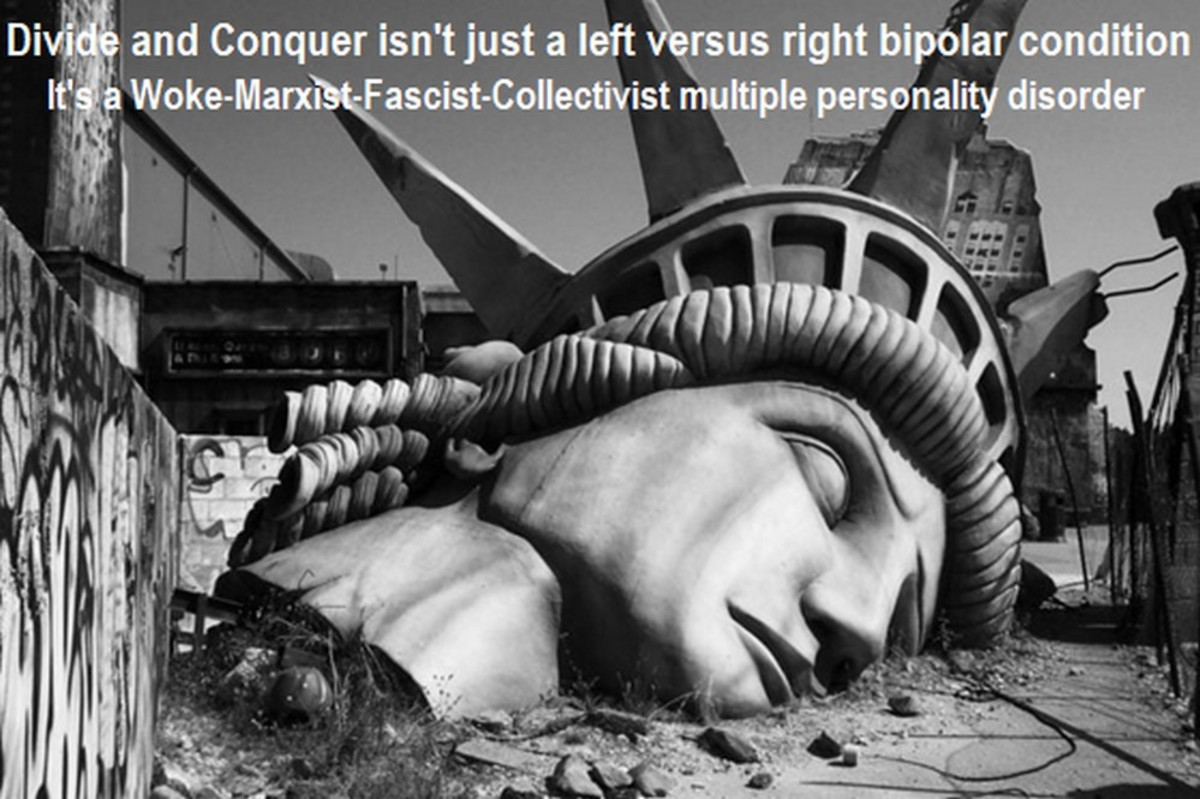 A Libertarian Looks at Our Dueling Divide & Conquer Culture