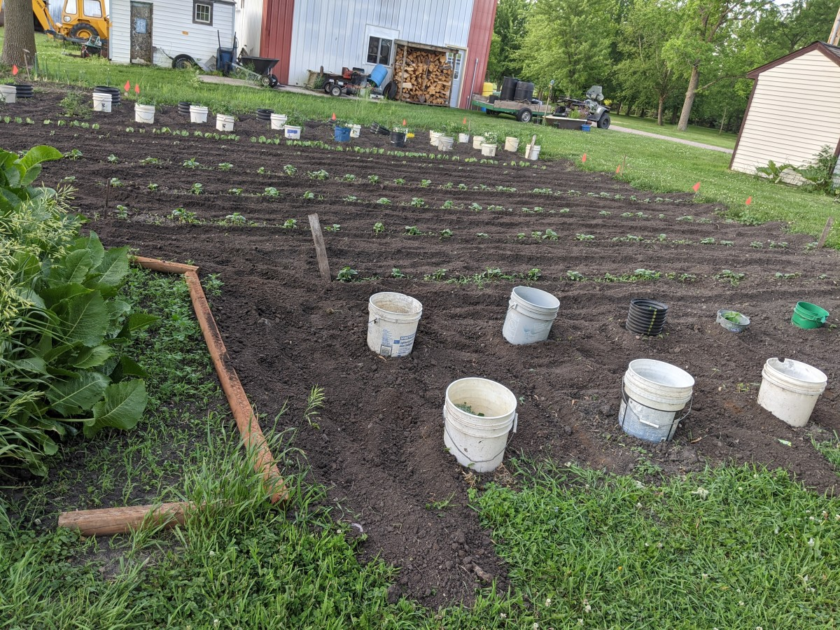 gardening-season-is-beginning-in-this-neck-of-the-woods