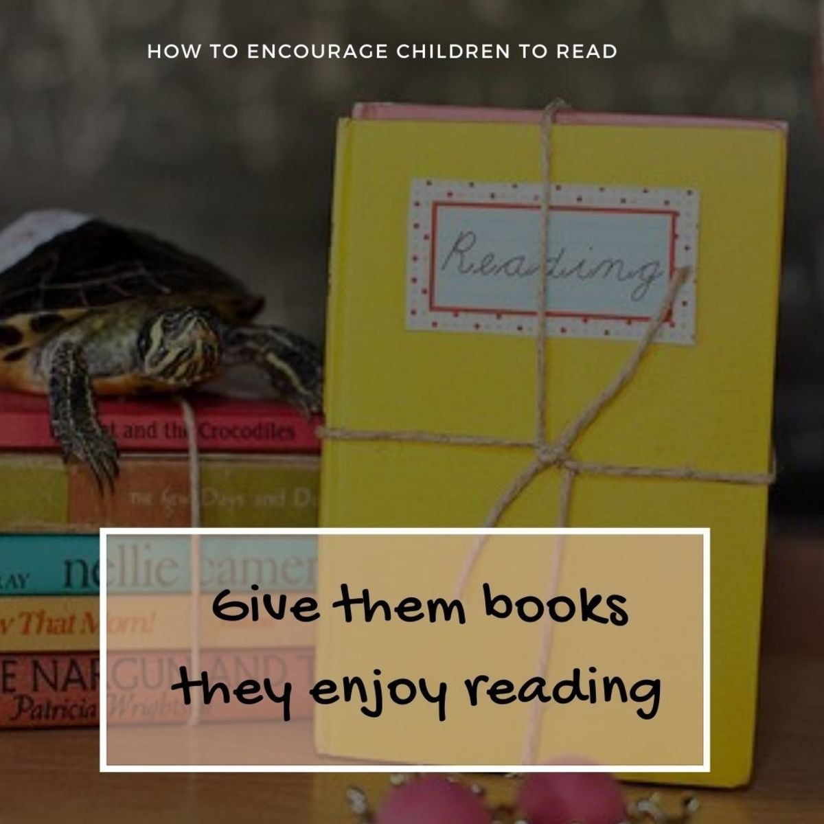 Encourage children to read by giving books they enjoy reading
