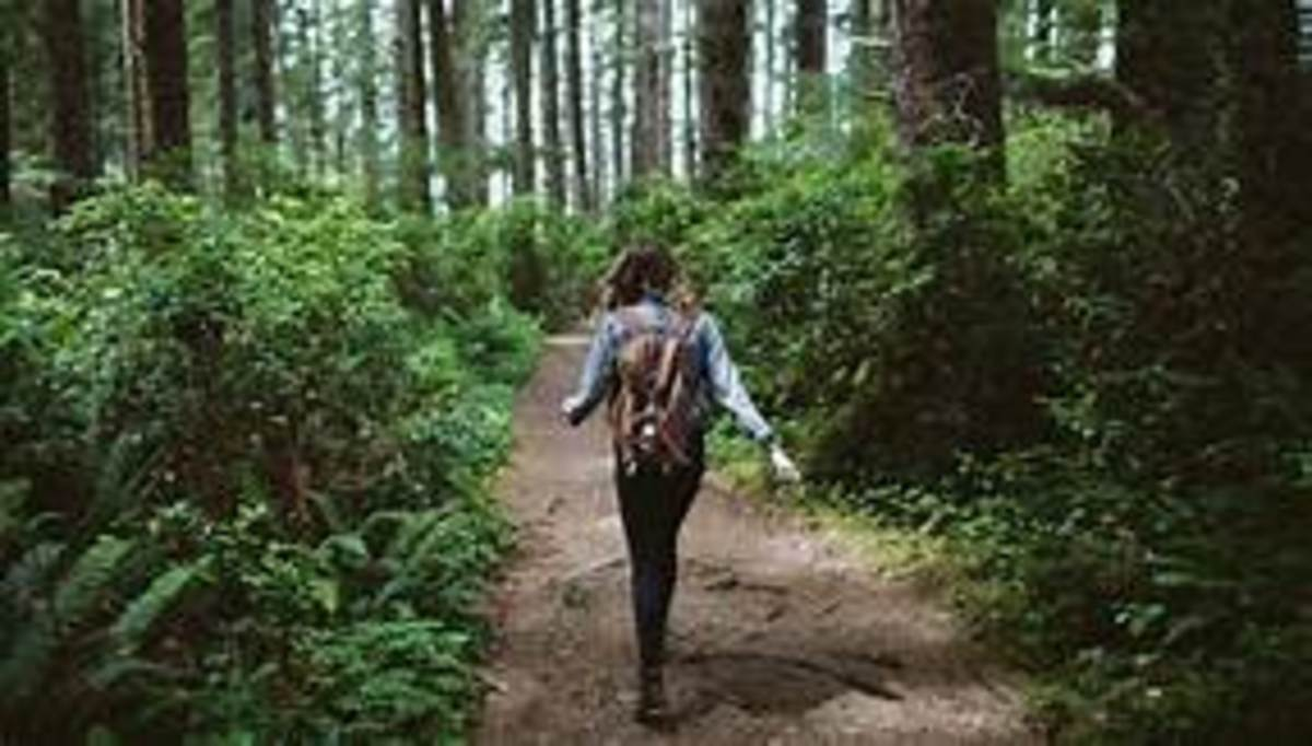 What will happen to the woman in the woods?