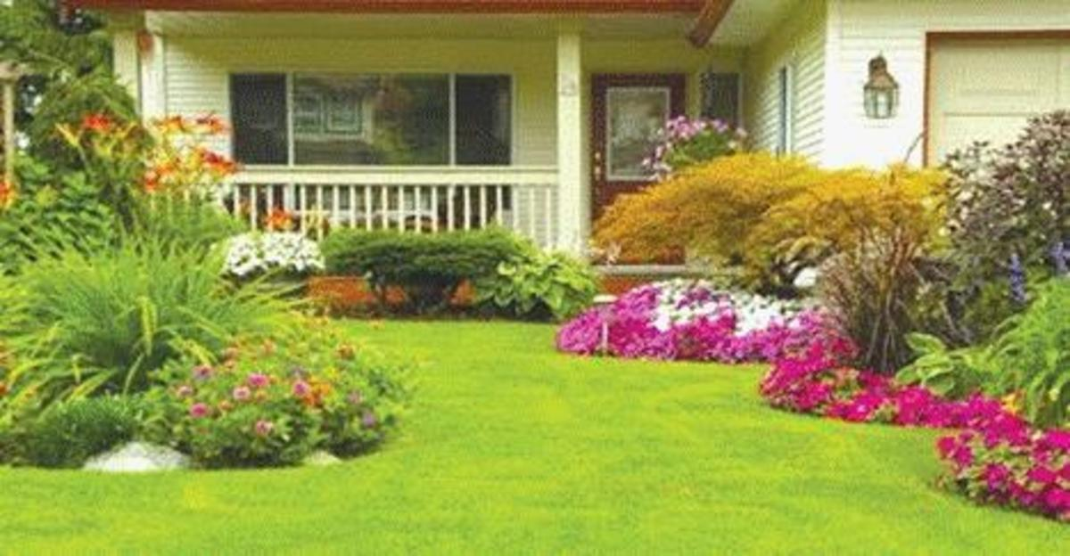 Home & Houses: Layout Landscapes