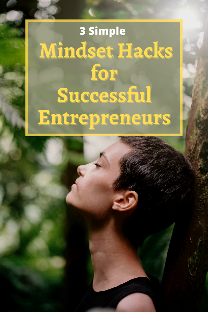The most important aspect of successful entrepreneurs is having the right mindset