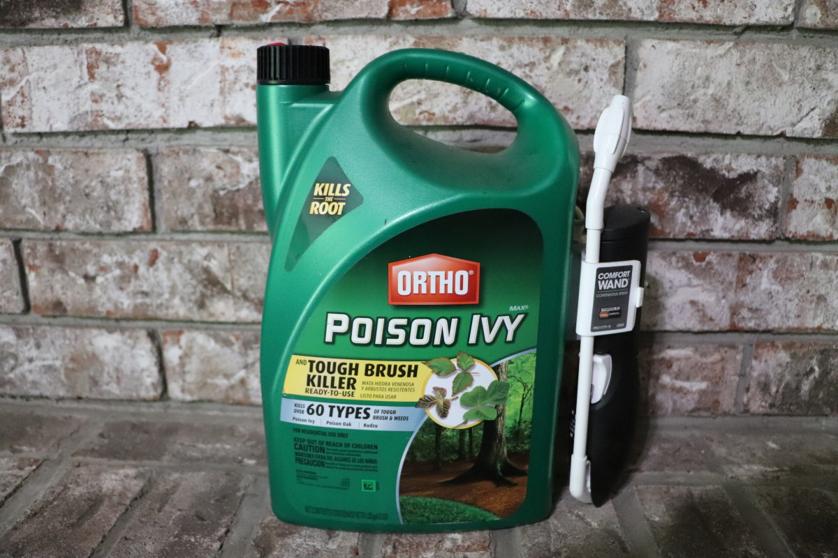 Ortho's poison ivy killer is formulated with Triclopyr. Do not use in areas with small trees, as the herbicide penetrates wood and will kill nearby ornamental shrubs and trees.