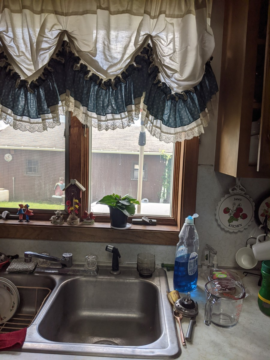 window-washing-using-libman-squeegee