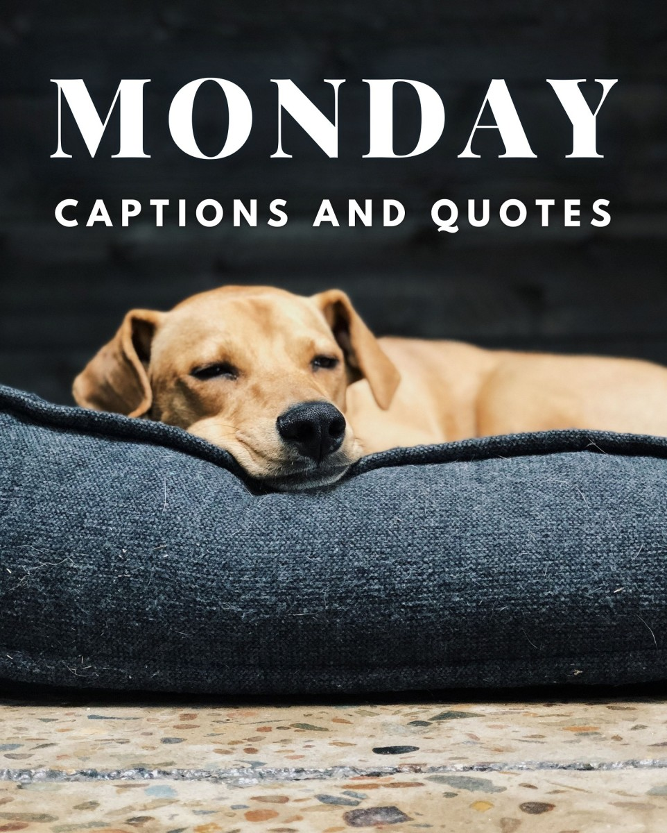 Monday Quotes and Caption Ideas