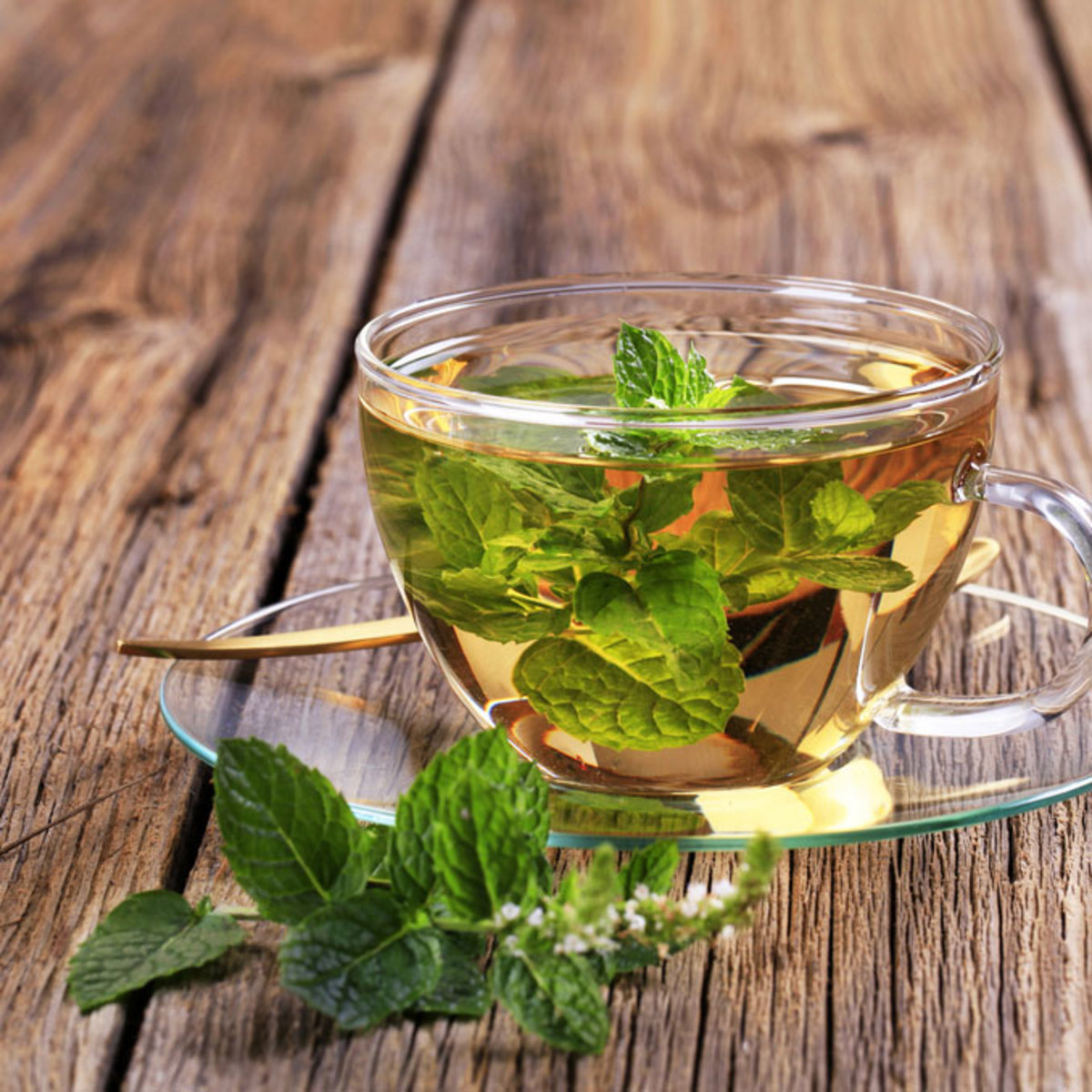 Healing and Delicious Herbal Teas to Blend at Home