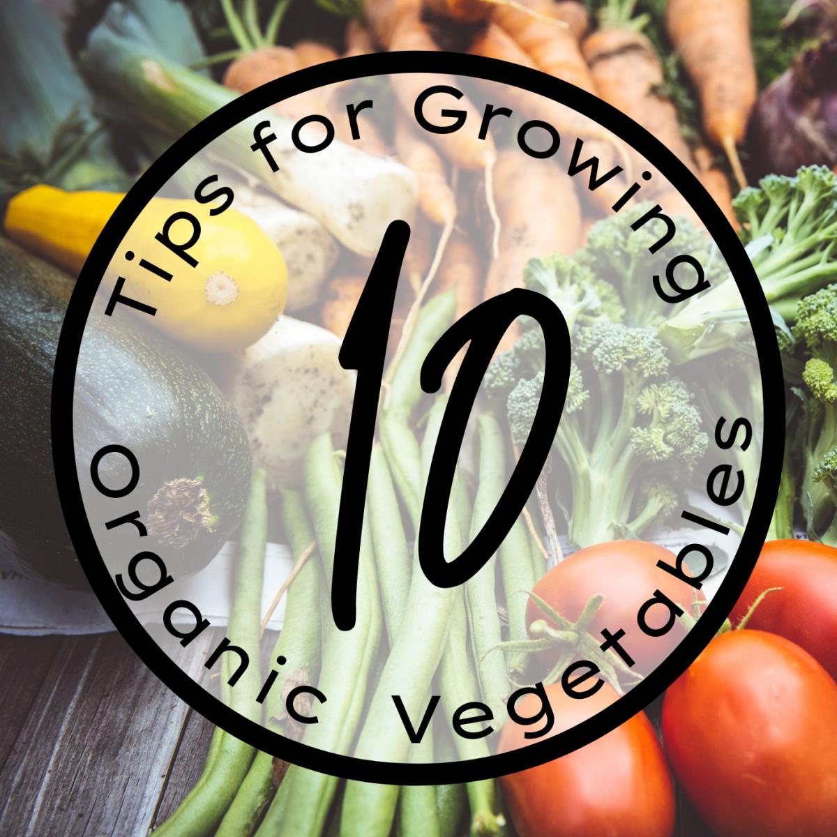 Grow an organic vegetable garden using these ten tips.