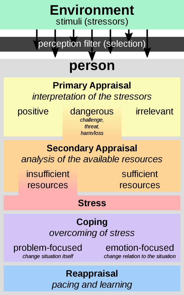 Lazarus' transactional model of stress using cognitive reappraisal