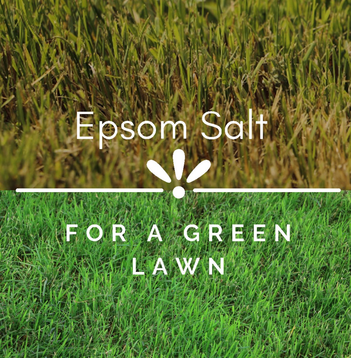 Yellowing lawns may be deficient in magnesium. Use Epsom salt for greener grass.
