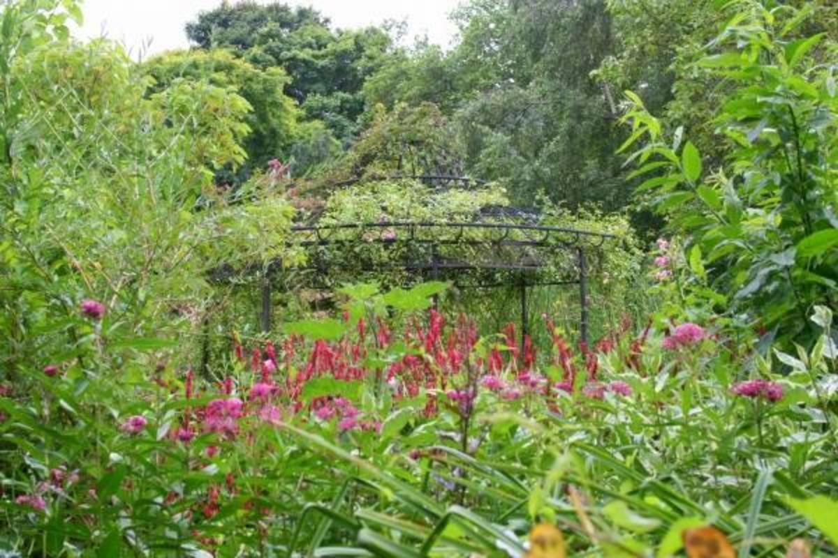 A secret garden within the Secret Gardens
