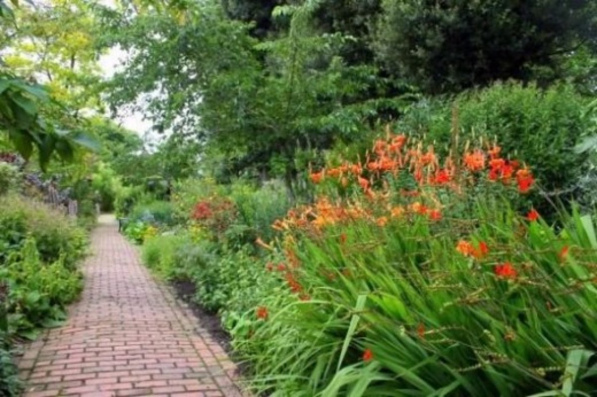 The Long Border with a brick paved pathway