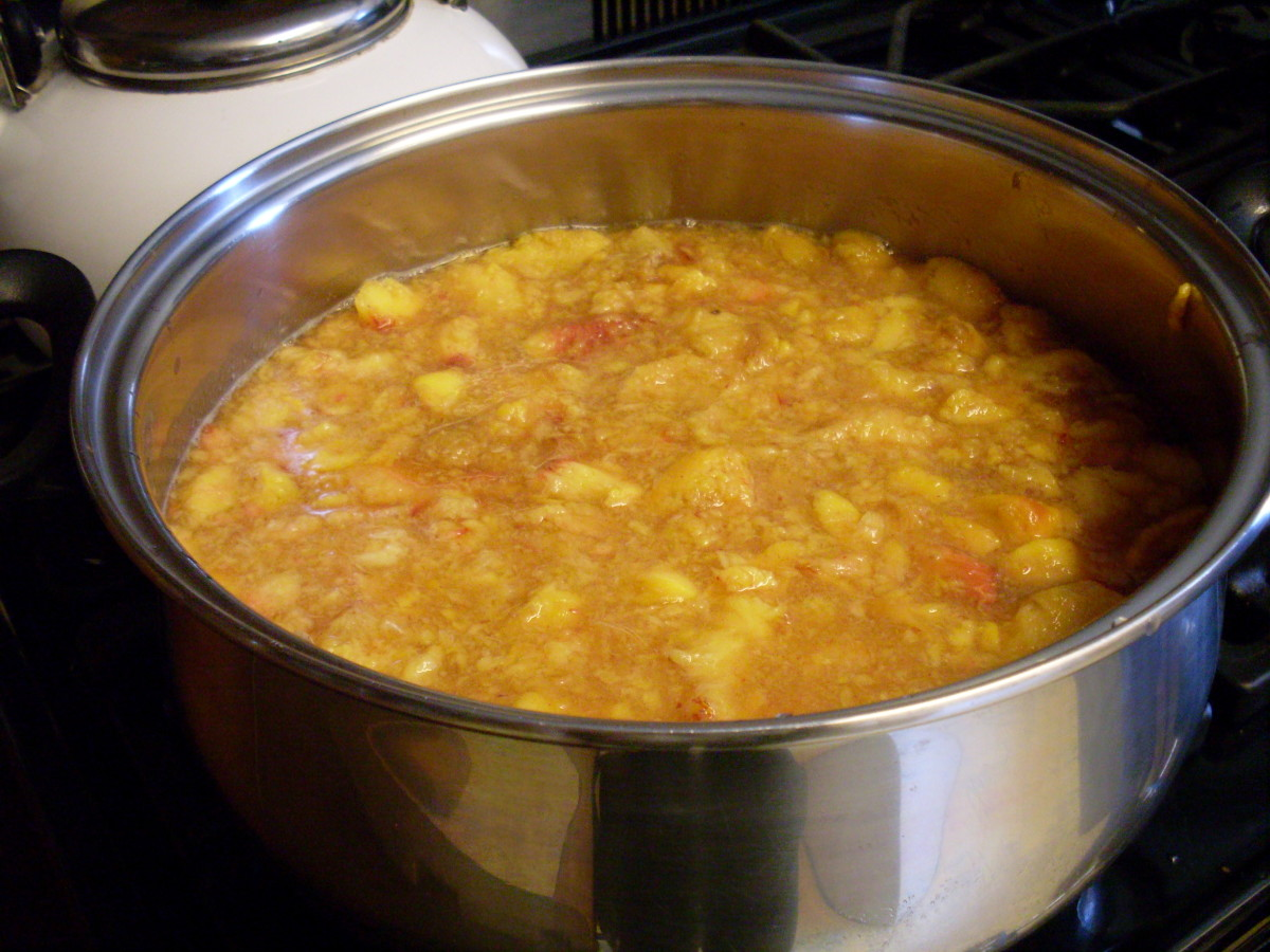 Place peaches and sugar (to taste) in a pot, and simmer until thick, stirring frequently. If you are adding pectin, do it early, also lemon juice and spices.