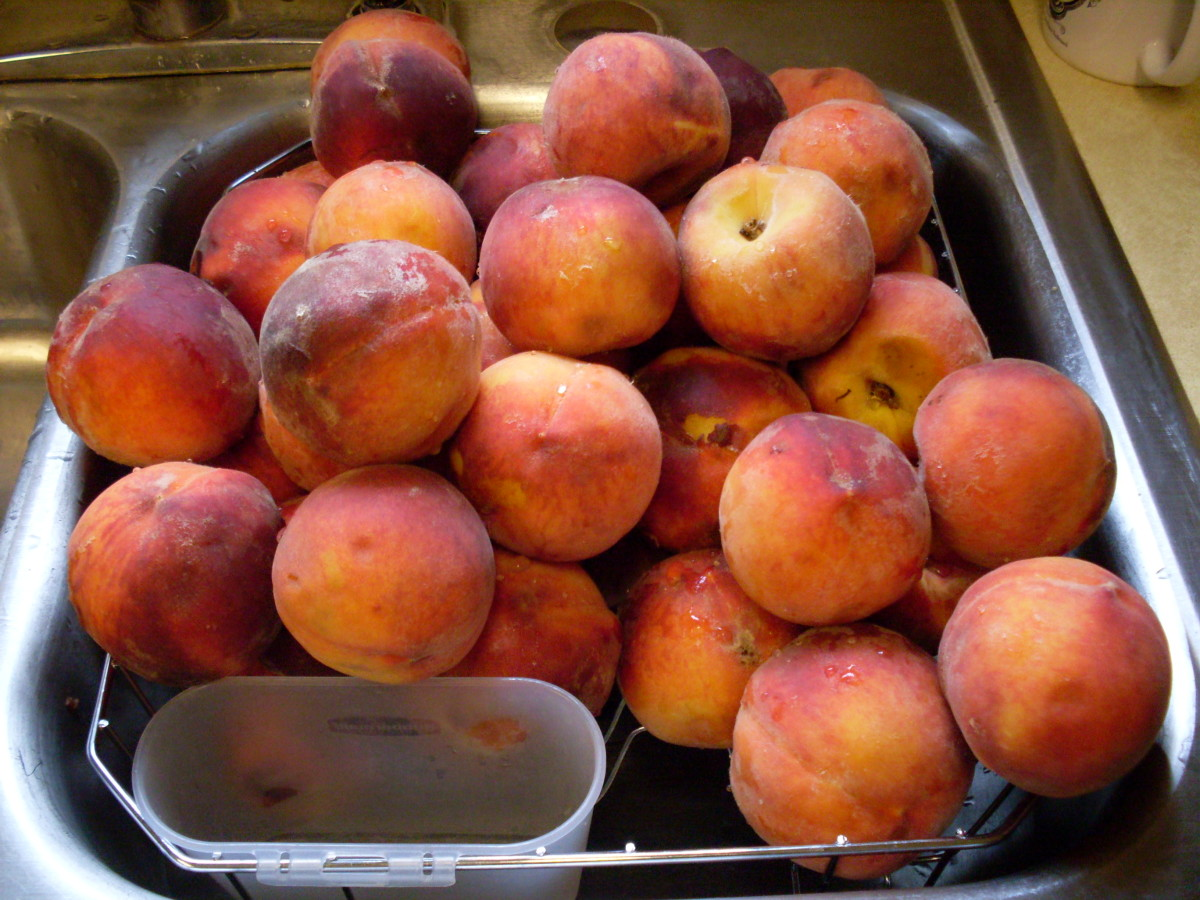 Wash whole peaches gently in a sink of water, just to remove excess dirt and matter, then set aside to drain a few minutes.
