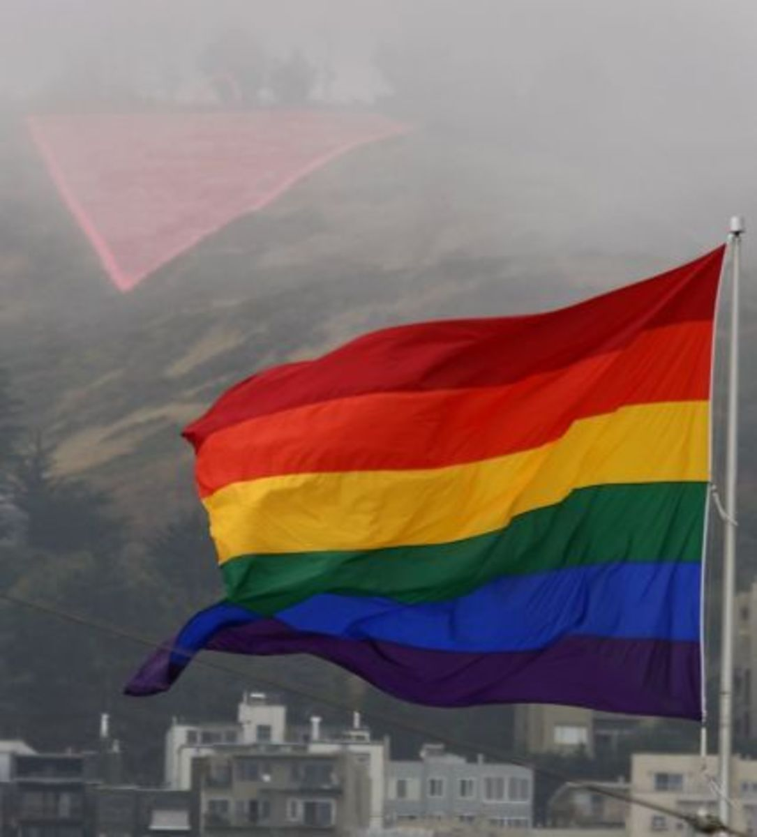 homosexuality-in-science-does-same-sex-behavior-natural