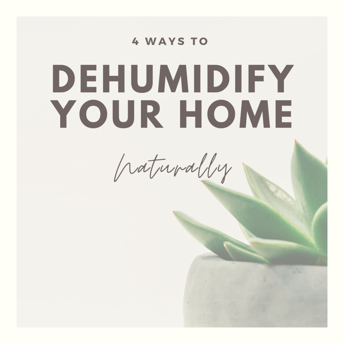 Learn these 4 easy tips to keep your home at a comfortable level of humidity.