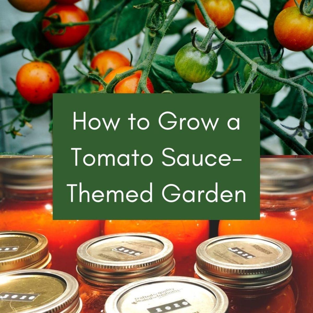 grow-a-spaghetti-sauce-theme-garden-in-a-4x-4-raised-bed