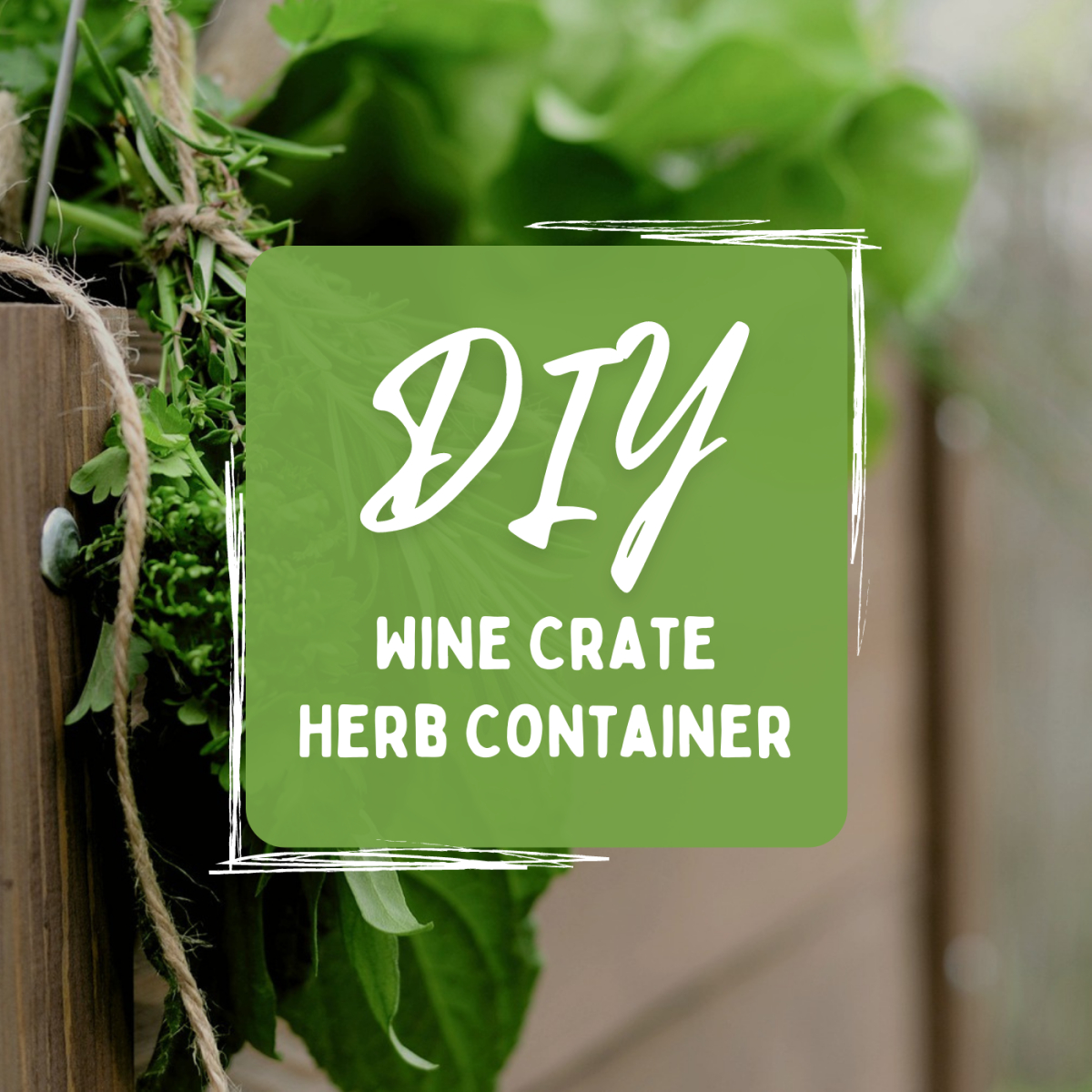 Got some old wine crates hanging around? Learn how to repurpose one as an attractive herb planter for your garden!