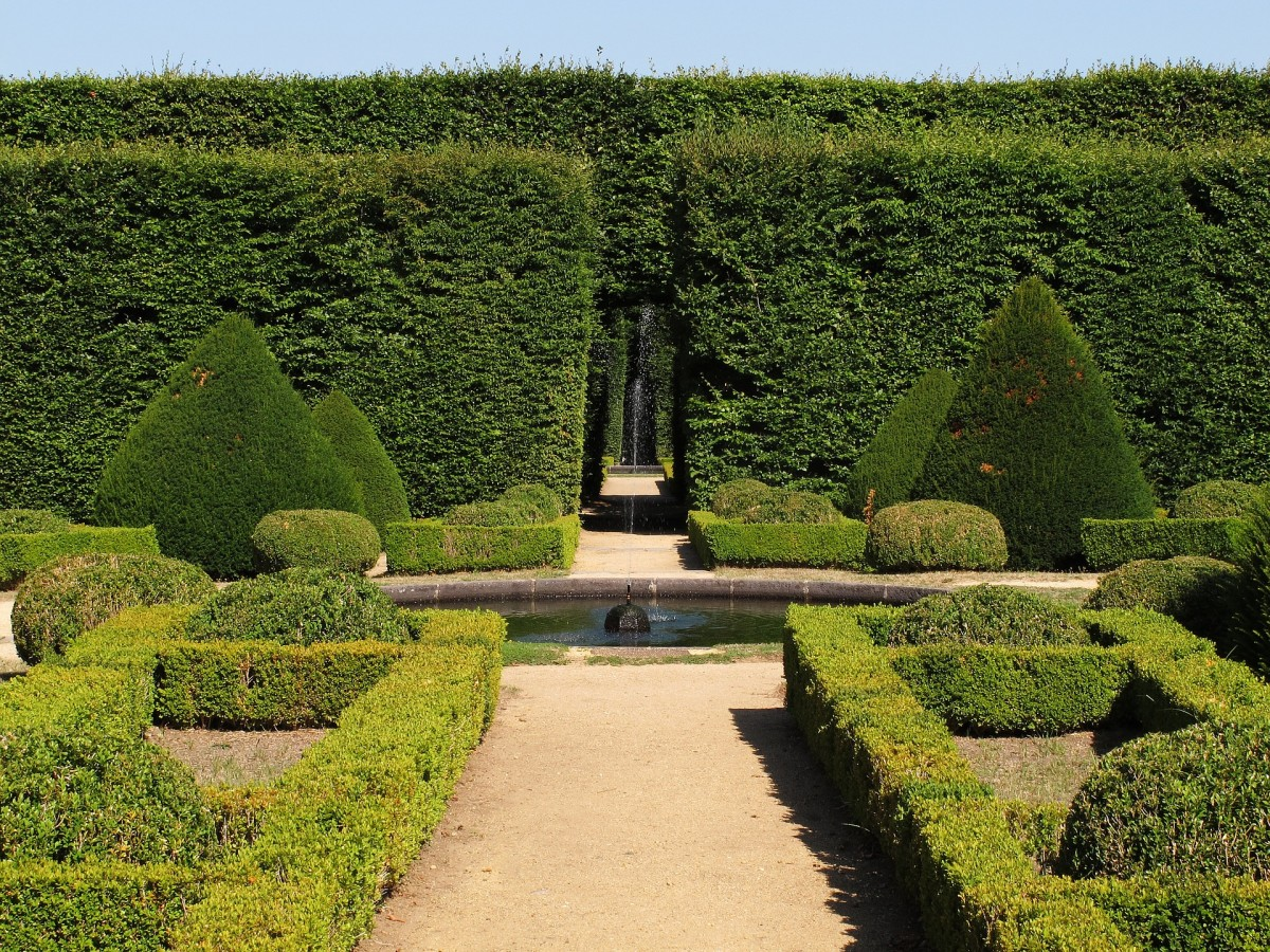 Boxwoods are great for edging your parterre.