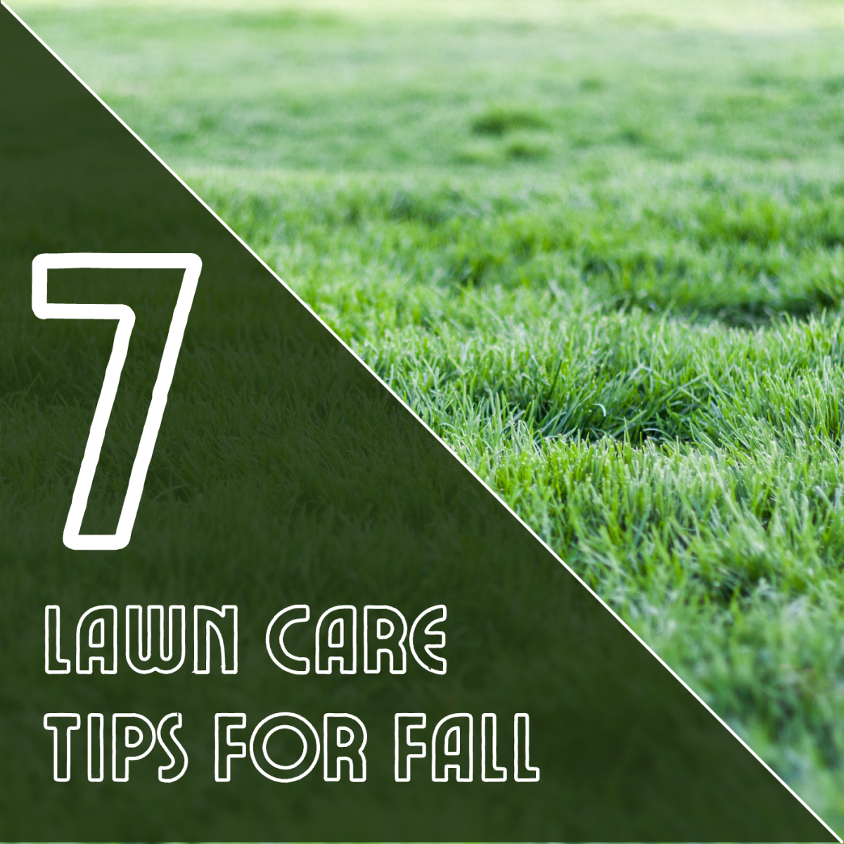 Prepare your yard for winter with these seven lawn care tips for the fall.