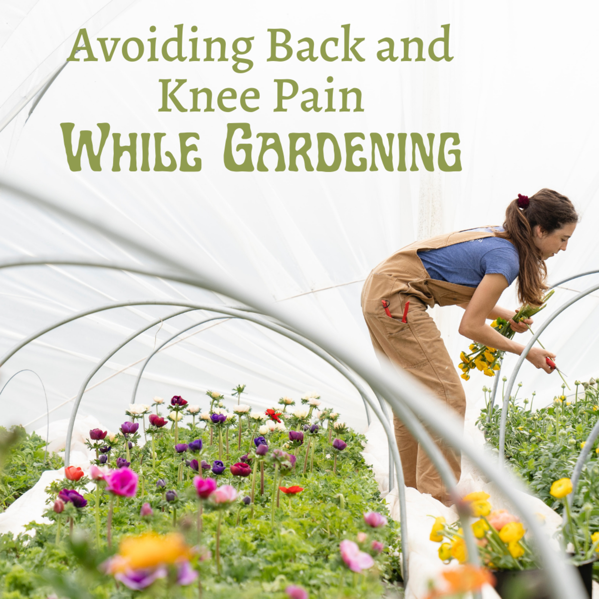 If you're not careful, you can end up with a sore back or knees after gardening or doing yardwork.