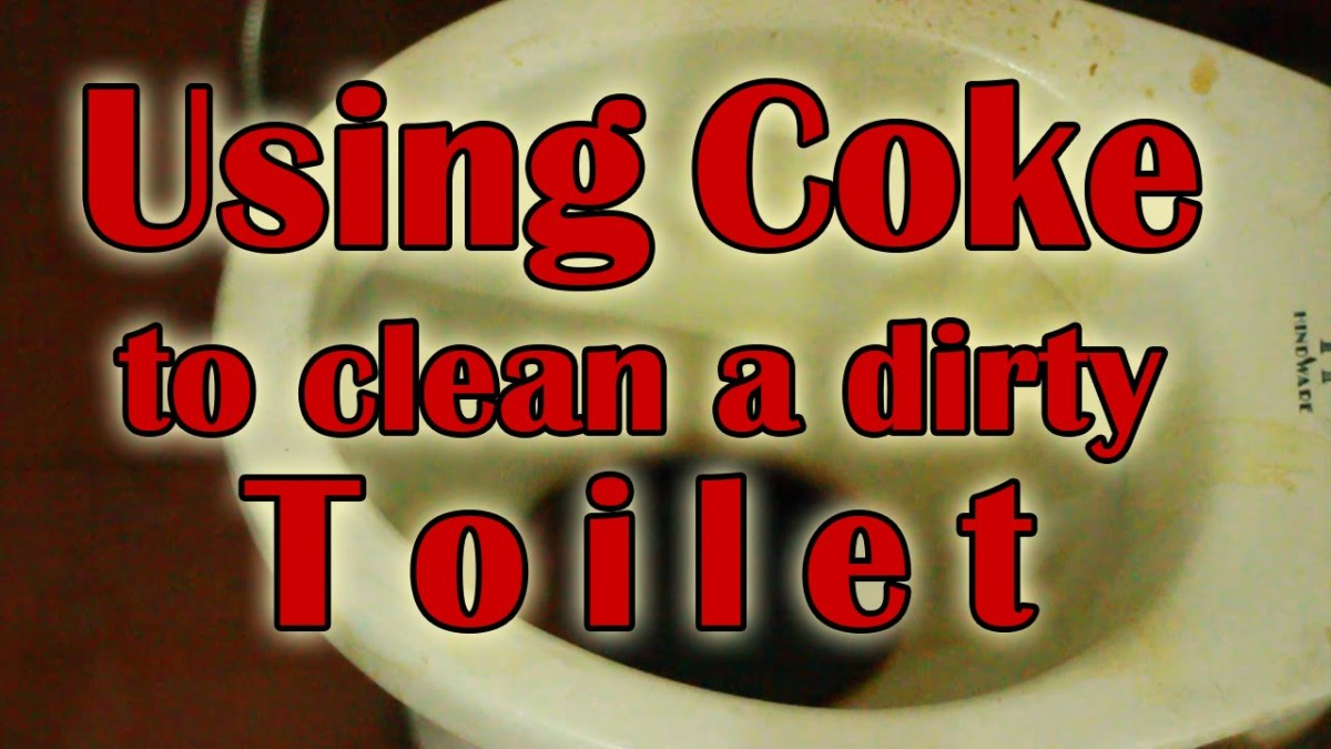 a-lazy-persons-guide-to-a-tidy-home-nine-home-cleaning-tips-youll-wish-you-knew-earlier