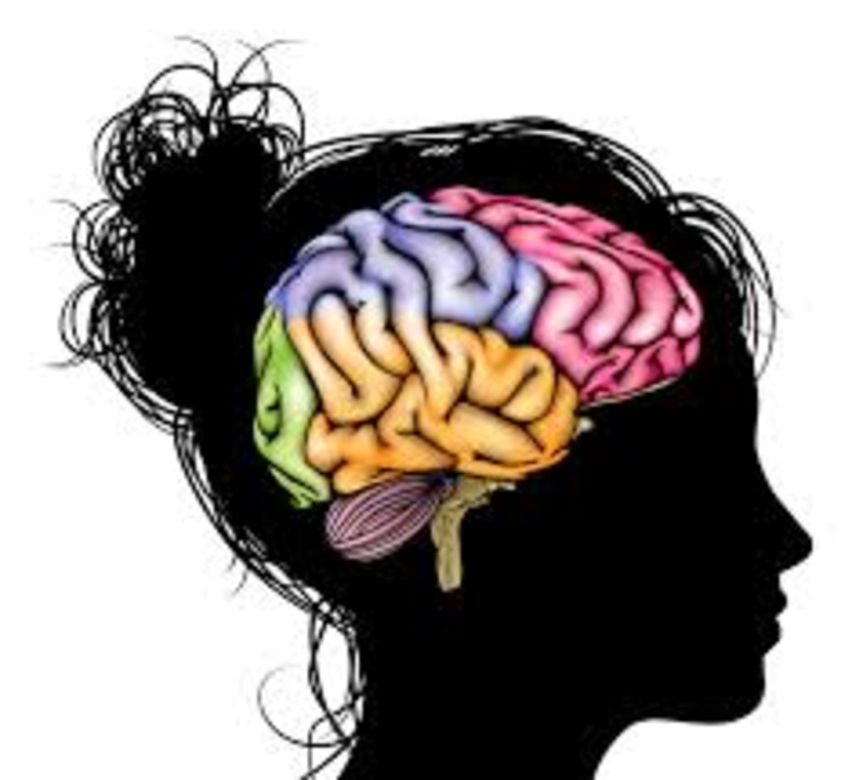 brain-works