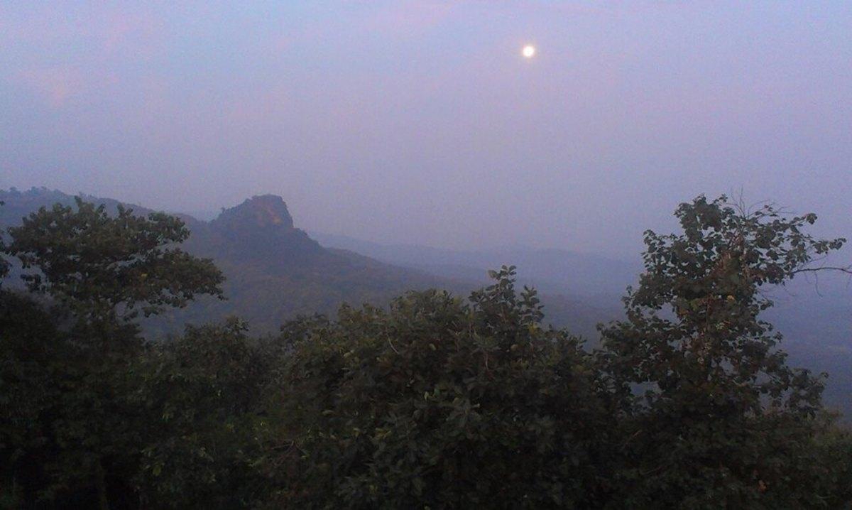 Payali Picnic spot near Bargi Dam Jabalpur